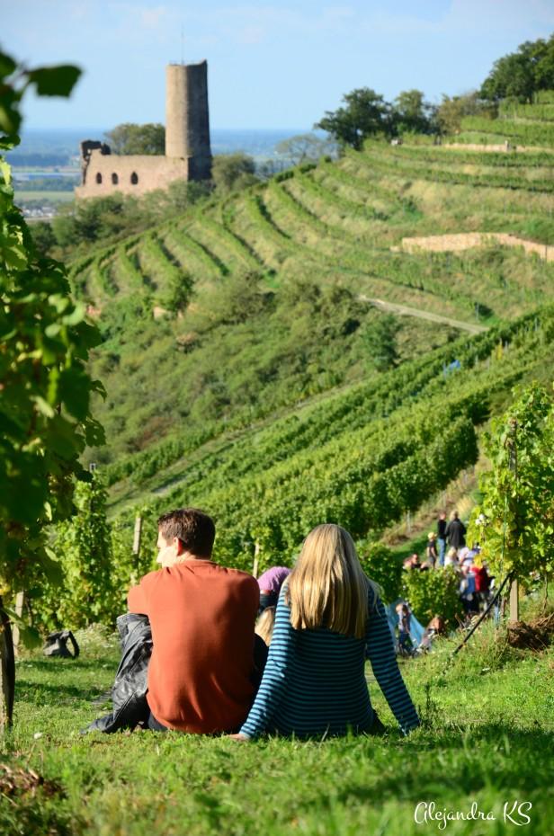 Una pareja disfrutando de una hermosa tarde entre los viñedos.